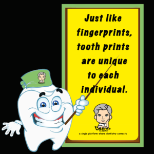 Just like fingerprints, tooth prints are unique to each individual.