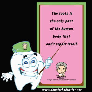 Did you know? The tooth is the only part of the human body that can,t repair itself.png